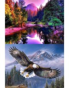 2 Pack 5d Full Drill Diamond Art Painting Kits for Adults Kids for Office Home Wall Decor Forest Flying Eagle