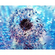 5D DIY Diamond Painting Frozen Dandelion Full Drill Diamond Embroidery Cross Stitch Kits Home Living..