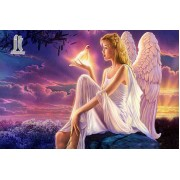 Diy Diamond Embroidery Angel Beauty Diamond Painting Rhinestone Painting Cross Stitch Needlework Hom..