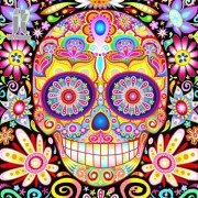 Diy Diamond Embroidery Colorful Skull Diamond Painting Rhinestone Painting Cross Stitch Needlework H..