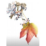 Diy Diamond Embroidery Grape Branches Diamond Painting Rhinestone Painting Cross Stitch Needlework H..