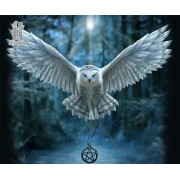 Diy Diamond Embroidery Harry Potter Owl Diamond Painting Rhinestone Painting Cross Stitch Needlework..