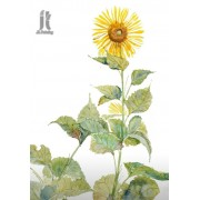 Diy Diamond Embroidery Sunflower Diamond Painting Rhinestone Painting Cross Stitch Needlework Home D..